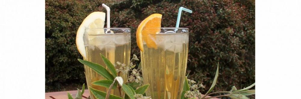 Tennessee Hill Chalets Lemon Myrtle Refresh